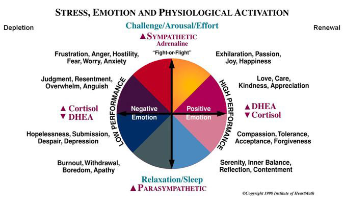 Biofeedback. emotion, stress and psychiological activation